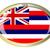 Amerika · Birleşik · Devletleri · bayrak · oval · düğme · gümüş · Amerika - stok fotoğraf © bigalbaloo