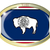 États-Unis · pavillon · ovale · bouton · argent · Amérique - photo stock © bigalbaloo