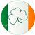 irish flag with shamrock button stock photo © bigalbaloo