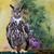 oka · oczy · Pióro · ptaków · zwierząt · portrety - zdjęcia stock © bigjohn36