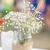 Flowers in mason jar stock photo © BigKnell