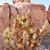 cacto · parque · canárias · natureza · linha · do · horizonte - foto stock © billperry