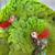 katonaság · papagáj · madár · szín · trópusi · állat - stock fotó © billperry