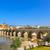 ancient roman bridge entrance river guadalquivir cordoba spain stock photo © billperry