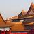 yellow roofs gugong forbidden city palacebeijing china stock photo © billperry