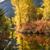 folyó · víz · fenék · folyam · piros · kövek - stock fotó © billperry