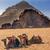 camelos · vale · lua · rum · lugar - foto stock © billperry