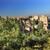 景観 · スペイン · 表示 · アルハンブラ宮殿 · 丘 · アラブ - ストックフォト © billperry