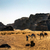 kamelen · woestijn · twee · kameel · naar · zon - stockfoto © billperry