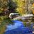 Осенний · сезон · реке · марина · желтый · Maple · Leaf · пород - Сток-фото © billperry