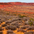 painted desert yellow grass lands orange sandstone red hillst ar stock photo © billperry