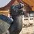 бронзовый · дракон · 3D · изображение · изолированный · белый - Сток-фото © billperry
