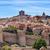 muren · kasteel · middeleeuwse · hemel · boom - stockfoto © billperry