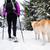 pessoas · caminhadas · neve · trilha · inverno · marcha - foto stock © blasbike