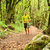 caminante · caminando · verde · forestales · hombre - foto stock © blasbike