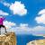 Woman climber or runner winner reaching life goal success on top stock photo © blasbike