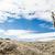 iz · imzalamak · yüksek · dağ - stok fotoğraf © blasbike