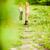 adam · çapraz · ülke · çalışma · iz · koşucu - stok fotoğraf © blasbike