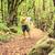 ハイカー · 地図 · 森林 · 男 · ハイキング · 徒歩 - ストックフォト © blasbike