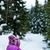 женщину · ходьбе · зима · лес · тропе · походов - Сток-фото © blasbike