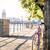út · fix · bicikli · figyelmeztetés · fa · viselet - stock fotó © blasbike