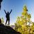 vrouw · wandelen · succes · silhouet · berg · top - stockfoto © blasbike