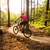 mountain biker riding cycling in summer forest stock photo © blasbike