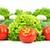 friss · zöldségek · izolált · fehér · étel · levél · gyümölcs - stock fotó © bloodua