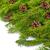 Weihnachten · Niederlassungen · Weihnachtsbaum · dekoriert · Süßigkeiten · Ballons - stock foto © bloodua