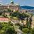 Budapest · királyi · palota · reggel · kilátás · oldal - stock fotó © bloodua