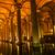 базилика · Стамбуле · Турция · несколько - Сток-фото © bloodua