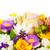 lumineuses · coloré · bouquet · jardin · sauvage · naturelles - photo stock © bloodua