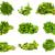 петрушка · свежие · тень · продовольствие · лист - Сток-фото © bloodua