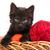 fekete · kiscica · játszik · piros · labda · Manhattan - stock fotó © bloodua