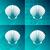 scallop seashell stock photo © blumer1979