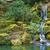 asian garden waterfall stock photo © bobkeenan