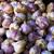 cipolla · aglio · chiodi · di · garofano · bianco · foglia · sfondo - foto d'archivio © bobkeenan