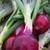 produire · organique · rouge · oignons · écran - photo stock © bobkeenan