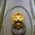 bonze door knob lion head stock photo © boggy