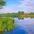 güzel · gündoğumu · sel · nehir · Polonya · ağaç - stok fotoğraf © bogumil