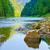 fiume · natura · riserva · pietra · confine · Polonia - foto d'archivio © bogumil