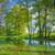 ağaçlar · bataklık · doğa · rezerv · güneşli · bahar - stok fotoğraf © bogumil