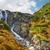 cascade · vallée · forêt · nature · paysage · montagne - photo stock © bogumil