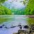 montagna · fiume · mattina · primavera · erba · bellezza - foto d'archivio © bogumil