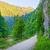 arbres · sentier · montagnes · Pologne · nature · bleu - photo stock © bogumil