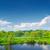 tájkép · mocsár · természet · fák · fa - stock fotó © bogumil