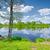fiume · scenario · vecchio · barca · sereno - foto d'archivio © bogumil