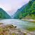 montagna · fiume · mattina · primavera · erba · foresta - foto d'archivio © bogumil