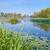 rivier · bos · hdr · water · boom · voorjaar - stockfoto © bogumil