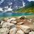 idyllisch · sneeuw · meer · wal · bergen - stockfoto © bogumil